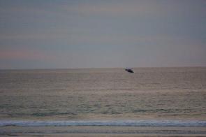 Wale Jump Todos Santos