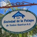 10th Annual Palapa Society Tianguis
