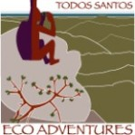 Todos Santos Eco Adventures Blog